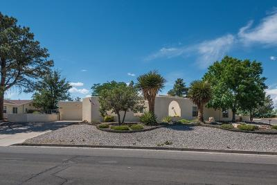 Rio Rancho Single Family Home For Sale: 3607 St Andrews Dr SE