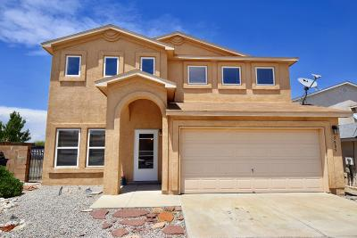 Albuquerque Single Family Home For Sale: 5005 Stone Mountain Road NW