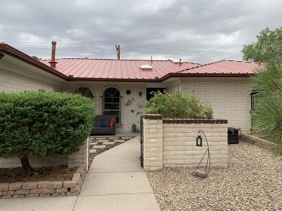 Albuquerque Single Family Home For Sale: 9116 Northridge Drive NE