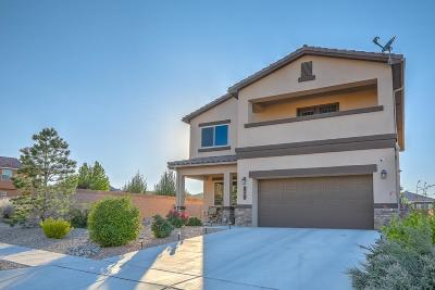 Albuquerque Single Family Home For Sale: 1601 Sunny Morning Drive NW
