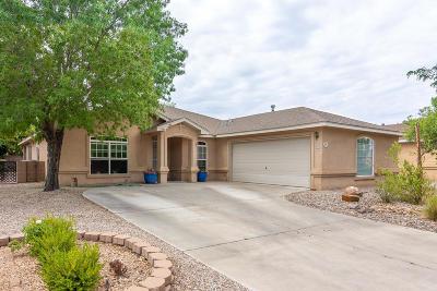 Albuquerque Single Family Home For Sale: 6916 Luz De La Luna Place NW