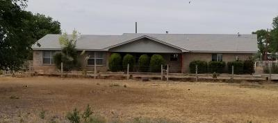 Los Lunas Single Family Home For Sale: 77 Entrada Aragon Road