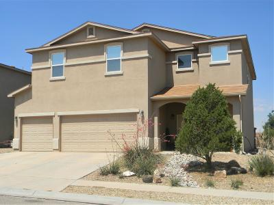 Los Lunas Single Family Home For Sale: 191 Big Sky Avenue SW
