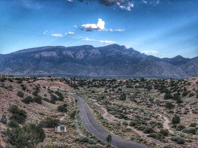 Placitas Residential Lots & Land For Sale: 29 Mimbres Court