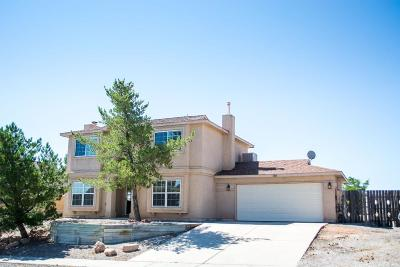 Rio Rancho Single Family Home For Sale: 6928 Albany Hills Drive NE