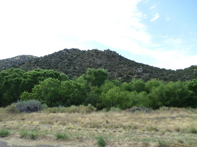Albuquerque Residential Lots & Land For Sale: 36 Cripple Creek Road SE