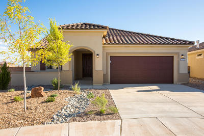 Albuquerque Single Family Home For Sale: 9028 Wind Caves Way NW