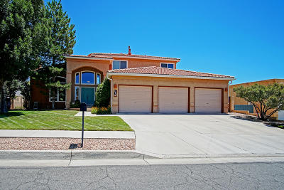 Albuquerque Single Family Home For Sale: 8408 Vintage Drive NE