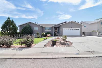 Rio Rancho Single Family Home For Sale: 184 High Ridge Trail SE