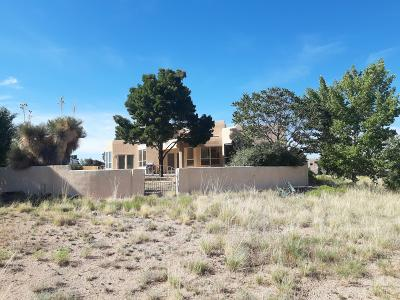 Albuquerque Single Family Home For Sale: 12009 Ranchitos Avenue NE