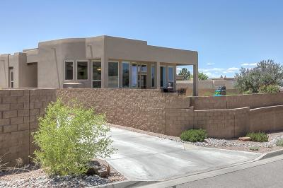 Albuquerque Single Family Home For Sale: 13504 Embudito View Court NE