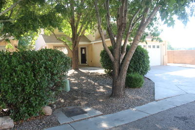 Albuquerque Single Family Home For Sale: 3638 Big Cottonwood Court SW
