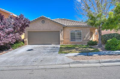 Albuquerque Single Family Home For Sale: 7239 Boxwood Avenue NE