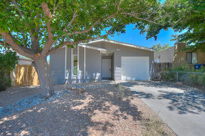 Albuquerque Single Family Home For Sale: 13321 Oriente Avenue NE
