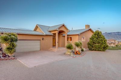 Rio Rancho Single Family Home For Sale: 5705 Rio Pinos Road NE