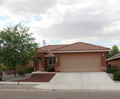 Albuquerque Single Family Home For Sale: 1039 Pacaya Drive NW