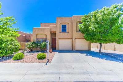 Albuquerque Single Family Home For Sale: 9200 Bluewood Lane NE