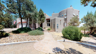 Sandia Park Single Family Home For Sale: 14 Canyon Ridge Drive