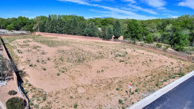 Albuquerque Residential Lots & Land For Sale: 4801 Valle Rio Trail NW
