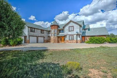 Sandoval County Single Family Home For Sale: 163 Camino Salado
