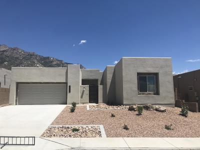 Albuquerque Single Family Home For Sale: 9512 Ridge Vista Drive NE