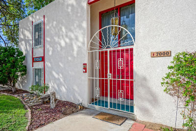 Bernalillo County Single Family Home For Sale: 7000 Vista Del Arroyo Avenue NE