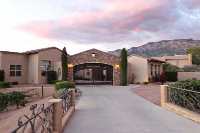 Albuquerque Single Family Home For Sale: 11501 San Francisco Road NE