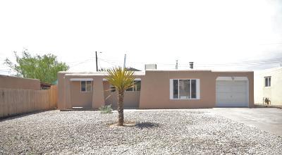 Albuquerque Single Family Home For Sale: 2601 Mary Ellen Street NE