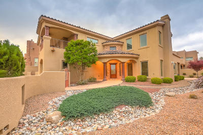 Albuquerque Single Family Home For Sale: 5105 Coyote Hill Way NW