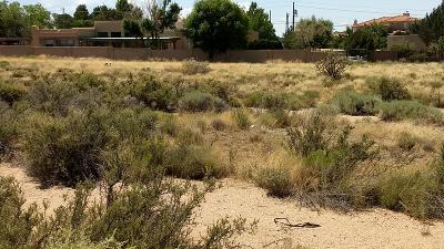 Albuquerque Residential Lots & Land For Sale: 006 Del Rey Avenue NE