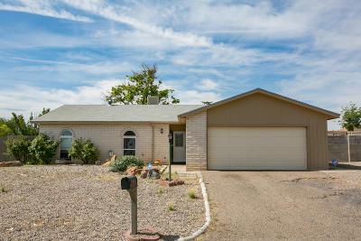 Rio Rancho Single Family Home For Sale: 684 Alpha Road SE