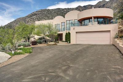 Albuquerque Single Family Home For Sale: 54 Rock Ridge Court NE