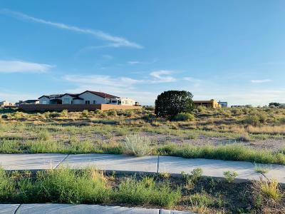 Albuquerque Residential Lots & Land For Sale: 8001 Camino Alto Court NW