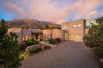 Sandia Heights Single Family Home For Sale: 361 Big Horn Ridge Drive NE