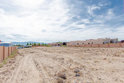 Albuquerque Residential Lots & Land For Sale: 5615 Cinder Cone Drive NW
