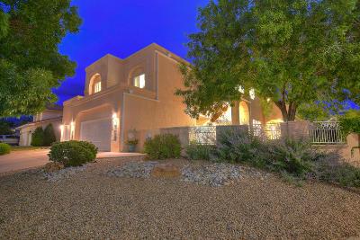 Albuquerque Single Family Home For Sale: 9200 Calistoga Avenue NE