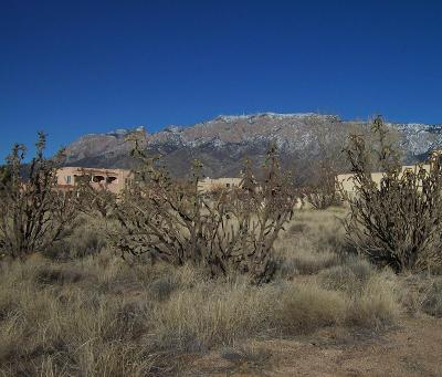 Albuquerque Residential Lots & Land For Sale: 11051 Santa Monica Drive NE