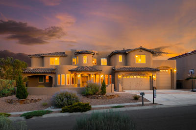 Rio Rancho Single Family Home For Sale: 3508 Greystone Ridge Drive SE