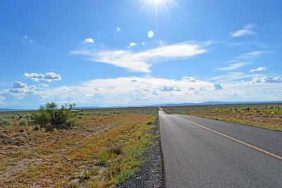 Valencia County Residential Lots & Land For Sale: Lot 498 Rancho Rio Grande #1