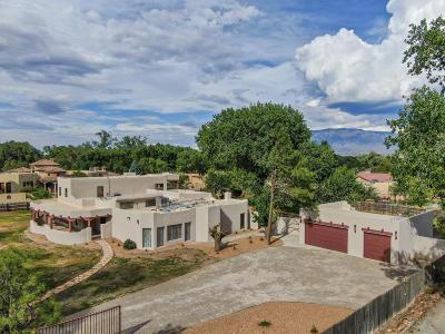 Albuquerque Single Family Home For Sale: 8808 Rio Grande Boulevard NW