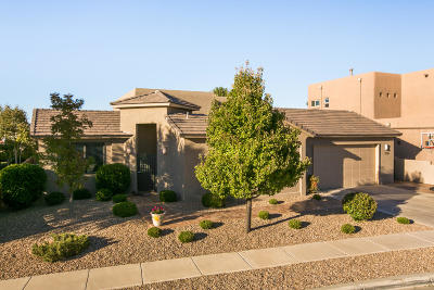 Albuquerque Single Family Home For Sale: 7315 Blue Moon Lane NE
