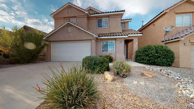 Bernalillo County Single Family Home For Sale: 10809 Antler Tool Road SW