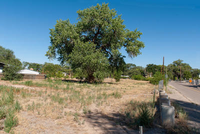 Albuquerque Residential Lots & Land For Sale: 1216 Sunset Road SW