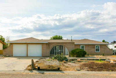 Valencia County Single Family Home For Sale: 1606 January Drive