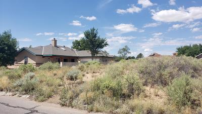 Rio Rancho Residential Lots & Land For Sale: 103 Utah Meadow Road NE