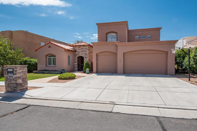 Bernalillo County Single Family Home For Sale: 8912 Robs Place NE