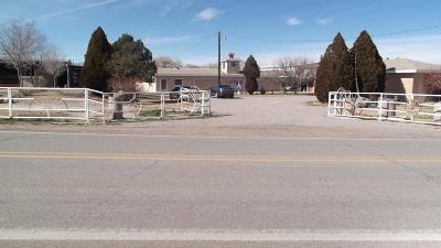Valencia County Farm & Ranch For Sale: 478 Jarales Road SW