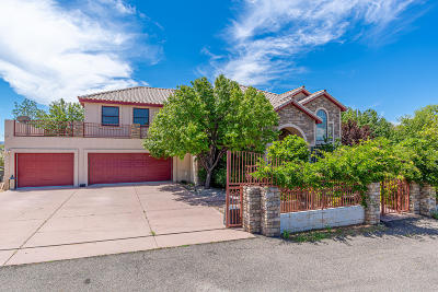 Albuquerque Single Family Home For Sale: 11610 Holly Avenue NE