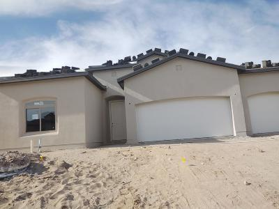 Bernalillo County Single Family Home For Sale: 6011 Buckthorn Avenue NW