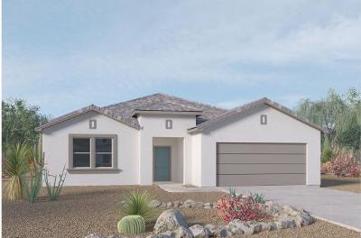 Albuquerque Single Family Home For Sale: 6211 Basil Place NW